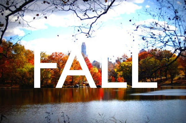 new-york-city-photo-fall-cc